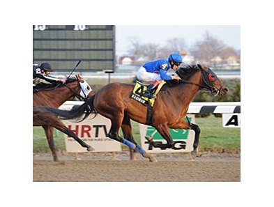"Saginaw will try for win 11 for 2012 in the Alex M. Robb Stakes at Aqueduct.<br><a target=""blank"" href=""http://photos.bloodhorse.com/AtTheRaces-1/at-the-races-2012/22274956_jFd5jM#!i=2274267216&k=8hKCbkK"">Order This Photo</a>"