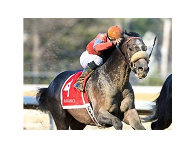 Win Willy finished first in the 2010 Razorback Handicap.