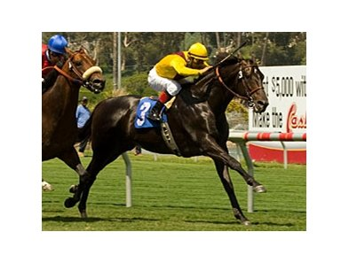 "El Roblar takes control of the Inglewood under Victor Espinoza. <br><a target=""blank"" href=""http://www.bloodhorse.com/horse-racing/photo-store?ref=http%3A%2F%2Fpictopia.com%2Fperl%2Fgal%3Fprovider_id%3D368%26ptp_photo_id%3D4389980%26ref%3Dstory"">Order This Photo</a>"