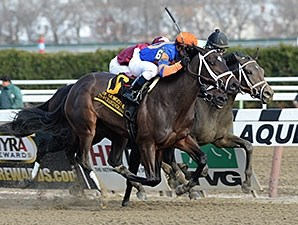 Stopchargingmaria wins the 2013 Demoiselle.