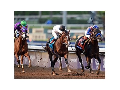 "Bayern (right) gets the Breeders' Cup Classic win over Toast of New York (middle) and California Chrome.<br><a target=""blank"" href=""http://photos.bloodhorse.com/BreedersCup/2014-Breeders-Cup/Classic/i-CTNgkCT/A"">Order This Photo</a>"