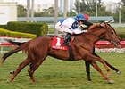 "Adirondack Summer wins the 2011 Dania Beach Stakes.<br><a target=""blank"" href=""http://www.bloodhorse.com/horse-racing/photo-store?ref=http%3A%2F%2Fpictopia.com%2Fperl%2Fgal%3Fprovider_id%3D368%26ptp_photo_id%3D9372831%26ref%3Dstory"">Order This Photo</a>"