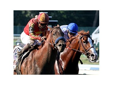 Coil and Shackleford dueling in the Haskell Invitational. Both are pointed towards the Travers.