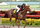 "Sugar Swirl storms to victory in the First Lady Handicap.<br><a target=""blank"" href=""http://www.bloodhorse.com/horse-racing/photo-store?ref=http%3A%2F%2Fpictopia.com%2Fperl%2Fgal%3Fprovider_id%3D368%26ptp_photo_id%3D3285962%26ref%3Dstory"">Order This Photo</a>"