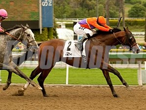 Worth Repeating wins the 2011 Tokyo City Cup.