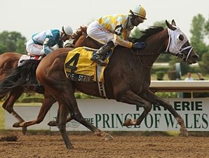 Dixie Strike Favored Among 14 for Breeders'