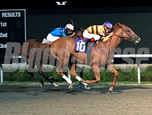 Wise Dan wins the 2011 Presque Isle Mile.