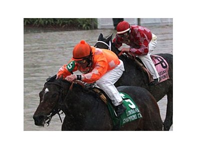 Superior Storm won the Ladies Stakes on Louisiana Champions Day, which was interrupted by the weather.