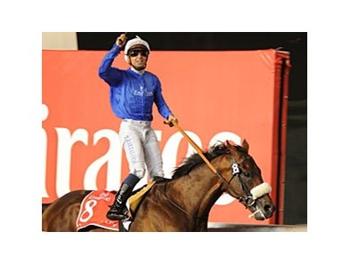 Monterosso in the Dubai World Cup.