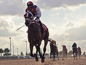 Sr. Quisqueyano Romps in Calder Derby