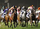 Ortensia (far left) passes them all to win the Al Quoz Sprint.
