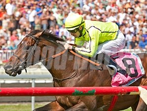 Jakkalberry wins the 2012 American St. Leger.