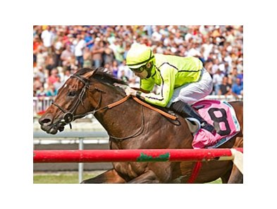Jakkalberry's only win in 2012 came in the American St. Leger, at 1 11/16 miles last summer at Arlington Park.