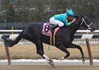 "I Want Revenge retains the Derby Dozen top spot.<br><a target=""blank"" href=""http://www.bloodhorse.com/horse-racing/photo-store?ref=http%3A%2F%2Fpictopia.com%2Fperl%2Fgal%3Fprovider_id%3D368%26ptp_photo_id%3D7872260%26ref%3Dstory"">Order This Photo</a>"
