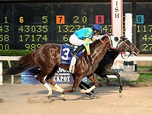 Ocho Ocho Ocho wins the 2014 Delta Downs Jackpot.