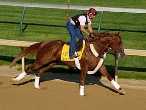 Square Eddie works at Churchill Downs on April 26