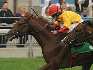 Guipago wins the 2010 Halton Stakes.