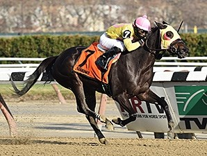 Vickis Dancer wins the New York Stallion Series.