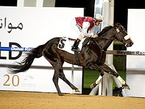 Le Bernardin wins the 2015 Mina Al Hamriya Handicap.