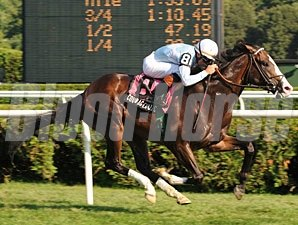 Courageous Cat wins the 2009 Hall of Fame Stakes.