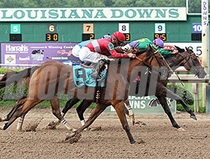 I Dazzle wins the 2014 Louisiana Cup Distaff Stakes.