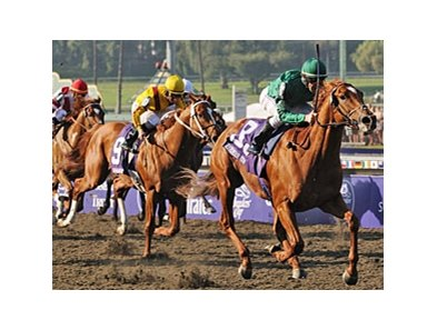 "Raven's Pass came across the pond to win last year's Breeders' Cup Classic. Will history repeat itself? <br><a target=""blank"" href=""http://www.bloodhorse.com/horse-racing/photo-store?ref=http%3A%2F%2Fpictopia.com%2Fperl%2Fgal%3Fprovider_id%3D368%26ptp_photo_id%3D6458912%26ref%3Dstory"">Order This Photo</a>"