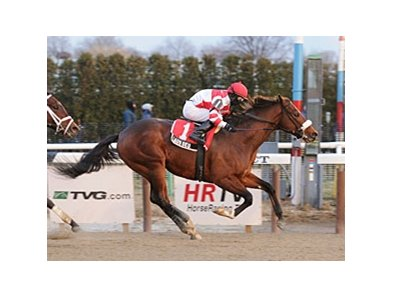 "Laus Deo comes home strong in the Count Fleet.<br><a target=""blank"" href=""http://www.bloodhorse.com/horse-racing/photo-store?ref=http%3A%2F%2Fpictopia.com%2Fperl%2Fgal%3Fprovider_id%3D368%26ptp_photo_id%3D8725991%26ref%3Dstory"">Order This Photo</a>"
