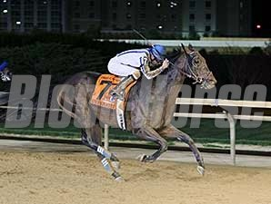 Imperative wins the 2014 Charles Town Classic.