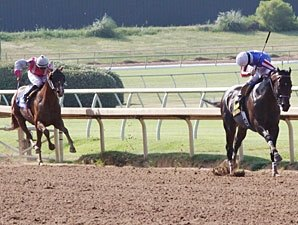 Handle, Attendance Declines at Lone Star Park