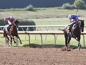 Nate's Mineshaft wins the Lone Star Park Handicap.