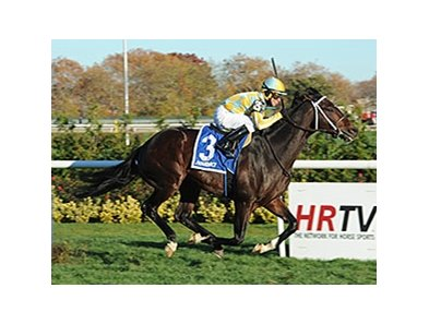"Dynamic Sky will try to surpass $1 million in career earnings in the San Gabriel Stakes.<br><a target=""blank"" href=""http://photos.bloodhorse.com/AtTheRaces-1/At-the-Races-2014/i-FzDL8xQ"">Order This Photo</a>"