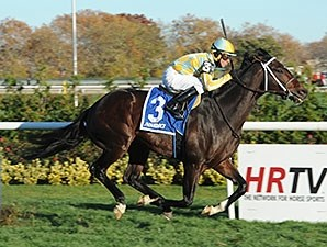Dynamic Sky wins the 2014 Red Smith.