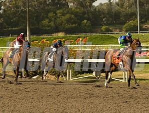 Rail Trip wins the 2010 Californian.