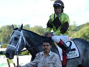 Donn Winner Graydar Retired to Taylor Made