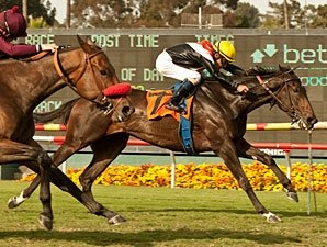 Marketing Mix Shows No Rust in Gamely Verdict