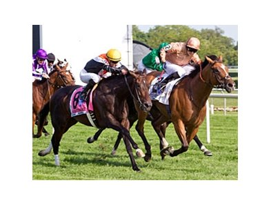 I'm A Dreamer holds off Marketing Mix to take the Beverly D. at Arlington Park.