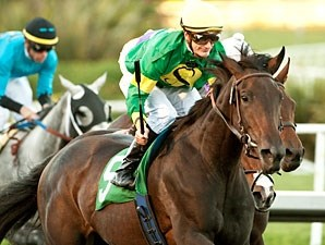 Midnight Ballet is the first stakes winner for Midnight Lute, wins the Sharp Cat Stakes.