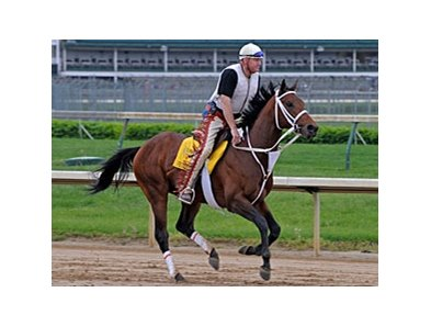 "Friesan Fire and Larry Jones at Churchill Downs.<br><a target=""blank"" href=""http://www.bloodhorse.com/horse-racing/photo-store?ref=http%3A%2F%2Fpictopia.com%2Fperl%2Fgal%3Fprovider_id%3D368%26ptp_photo_id%3D8057482%26ref%3Dstory"">Order This Photo</a>"