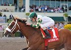 Mucho Macho Man Out of Gulfstream Handicap