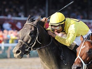 Quick Wit Poised for Hawthorne Derby