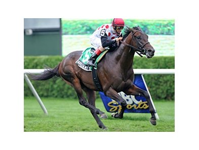 Brilliant Speed wins the Saranac Stakes.