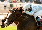Courageous Cat outfights Caracortado to win the Shoemaker Mile.