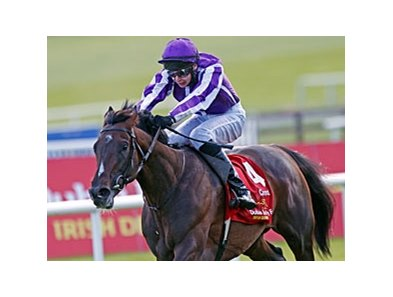 "Camelot and Joseph O'Brien take the Irish Derby.<br><a target=""blank"" href=""http://photos.bloodhorse.com/AtTheRaces-1/at-the-races-2012/22274956_jFd5jM#!i=1936981311&k=8NSBSr7"">Order This Photo</a>"