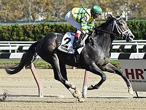 Blofeld wins the Nashua Stakes Nov. 2, 2014.