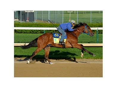 "Vyjack went five furlongs under trainer Rudy Rodriguez in 1:00 2/5.<br><a target=""blank"" href=""http://photos.bloodhorse.com/TripleCrown/2013-Triple-Crown/Kentucky-Derby-Workouts/29026796_jvcnn8#!i=2478245732&k=cRTCHdz"">Order This Photo</a>"