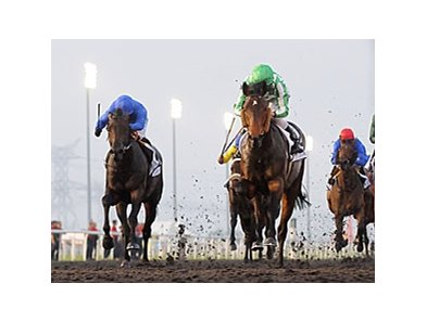 Lines of Battle in Dubai.