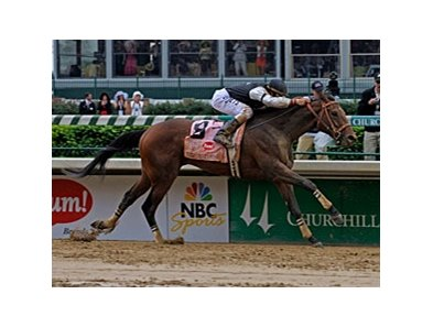 "What kind of boost will Birdstone's stallion career receive from Mine That Bird's Derby win?<br><a target=""blank"" href=""http://www.bloodhorse.com/horse-racing/photo-store?ref=http%3A%2F%2Fpictopia.com%2Fperl%2Fgal%3Fprovider_id%3D368%26ptp_photo_id%3D8063583%26ref%3Dstory"">Order This Photo</a>"