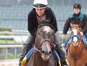 The Factor jogs at Churchill Downs.