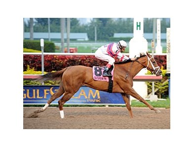 "Fusaichiswonderful is 9-2 on the morning line for the Eight Belles.<br><a target=""blank"" href=""http://photos.bloodhorse.com/AtTheRaces-1/at-the-races-2013/27257665_QgCqdh#!i=2388092765&k=VBSqW7X"">Order This Photo</a>"