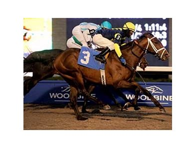 Marchfield takes the Autumn Stakes Nov. 9 at Woodbine.